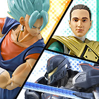 USA Tamashii Web Site reopened after renovation!  Check out new information!
