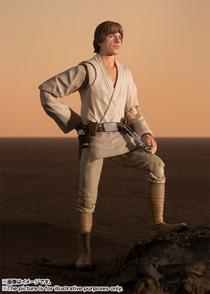 S.H.Figuarts ルーク・スカイウォーカー(A NEW HOPE) 09